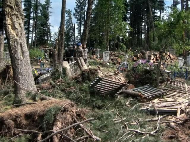 В Сургутском районе сильнейший ветер повалил деревья и сломал ограды на кладбище